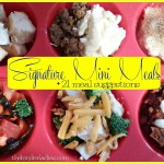 Thrifty Tip/Recipe: Signature Mini Meals! + 15 Meal Suggestions!