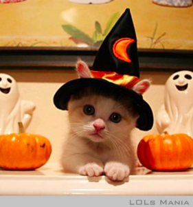 Halloween is almost here!