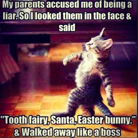 parents are liars meme
