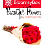 Holiday Gift Guide: Bloomsy Box Beautiful Flowers by Subscription
